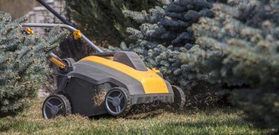 Скарификатор серьезно прочищает газон