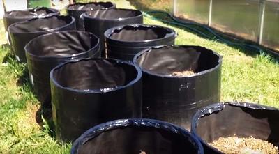 Мешки для выращивания картошки. Каркас из оцинкованной сетки