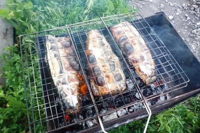 Скумбрия и молодые кабачки, запеченные на углях. Пошаговый рецепт приготовления с фото