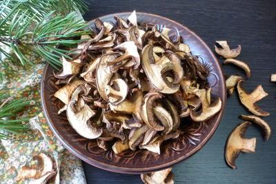 Как сушить моховики (грибы) на зиму. Пошаговая инструкция с фото