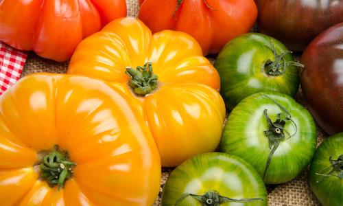 Описание и характеристики зеленых сортов помидор