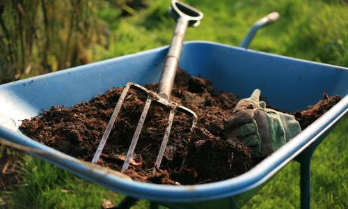 Как подкармливать компостом