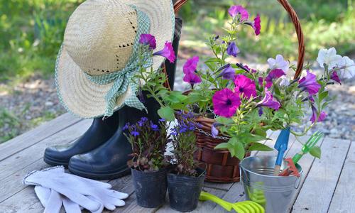 Лайфхак для сада своими руками