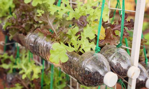 Бутылки поделки для огорода