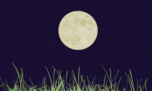 Лунный календарь: влияние луны и ее фаз, влияние стихий, нюансы использования календаря || Нужно ли придерживаться лунного календаря при посадке