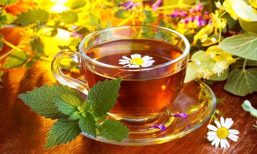 Травы для чая виды заготовка и польза