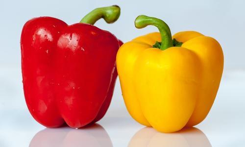 Как собрать и заготовить семена перца в домашних условиях: сладкого болгарского и горького чили
