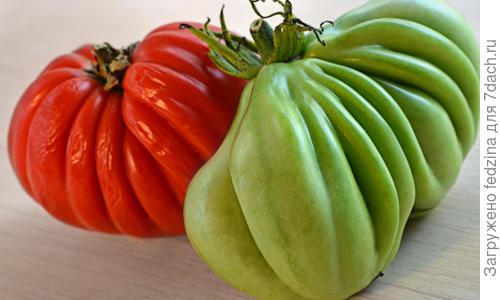 Урожайность, характеристика и описание сорта томата Кубышка