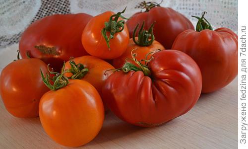 Семена томата «Бычье сердце черное», серия «От автора»