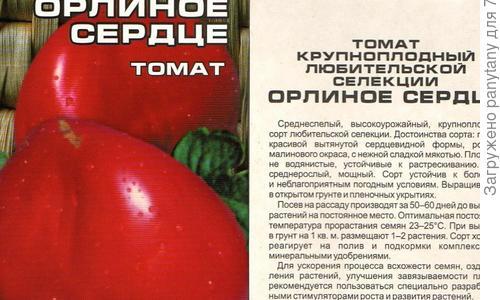 Томат Орлиное сердце: описание и характеристика сорта, урожайность с фото
