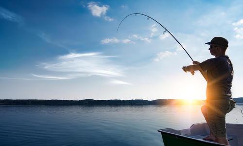 В какой рыбе есть описторхоз список