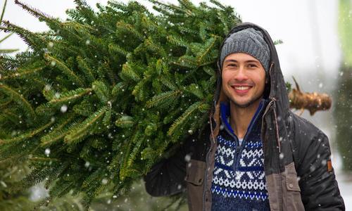 Новогоднее дерево на участке