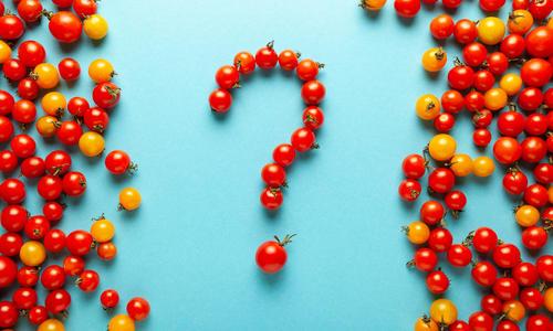 Помидор: ягода, овощ или фрукт?