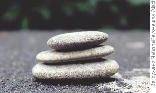 Натуральный камень в дизайне: альпийские и каменистые горки, рокарии, сады камней