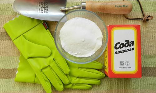 Сода для огурцов опрыскивание и полив как применять подкормку