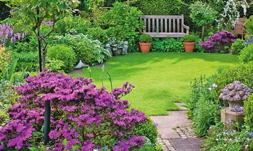 Мой красивый сад