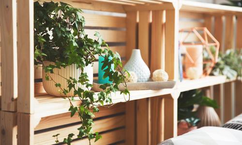 Деревянные ящики под цветы своими руками