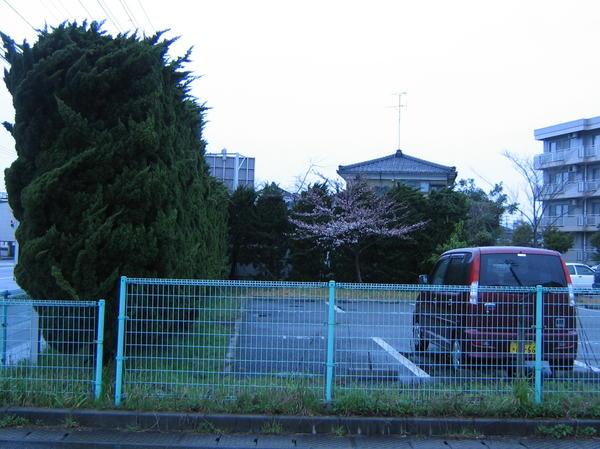 туи в японии