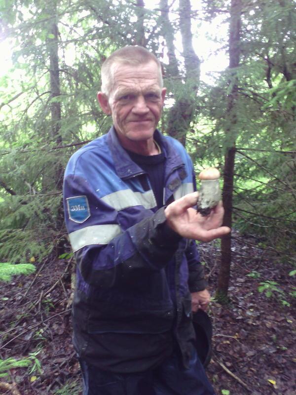 отец нашел гриб