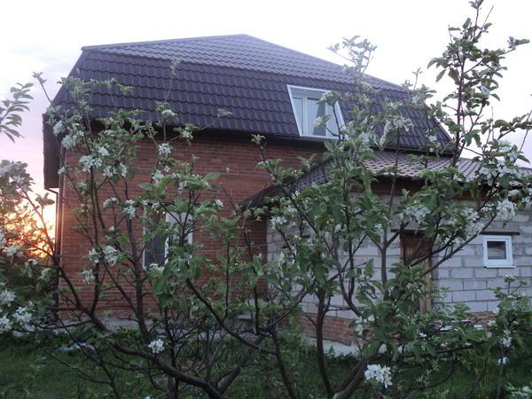 Дом-вид из сада