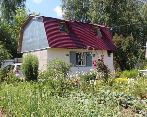 летний дачный дом