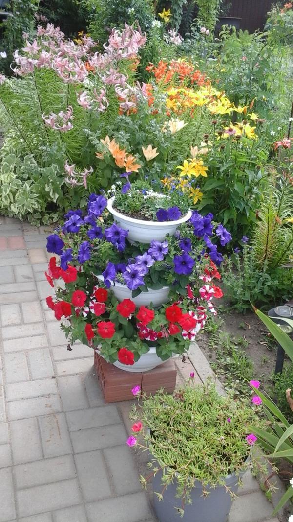 Цветы так успокаивают!