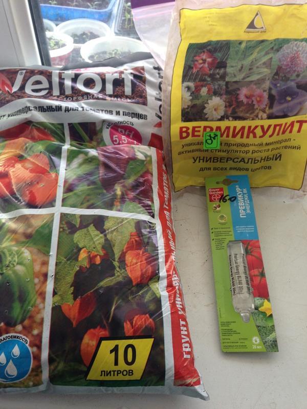 За основу взяла готовую почву для рассады томатов, туда добавлю вермикулит, кокосовый субстрат и золу