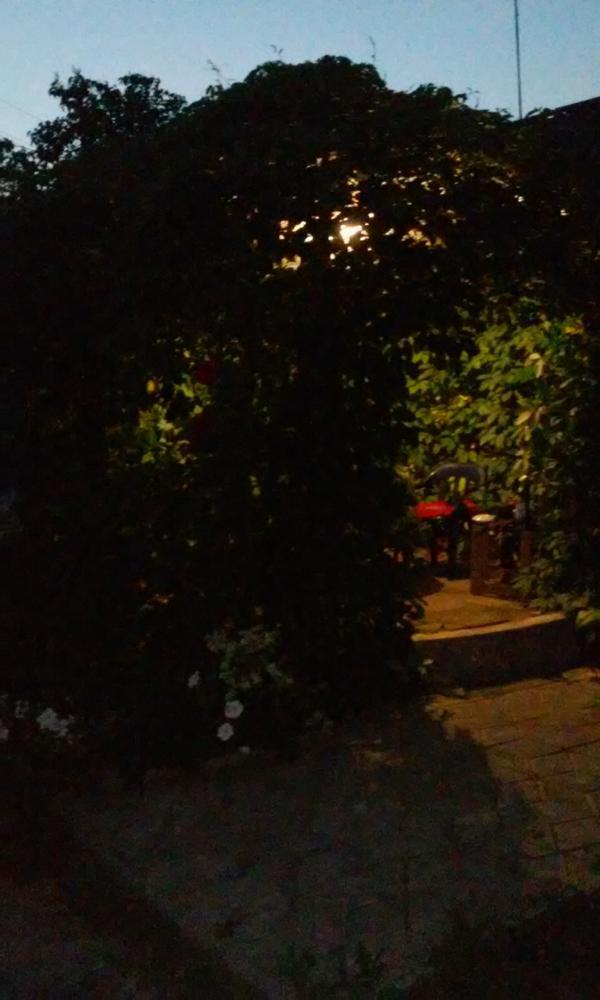 Беседка ночью.
