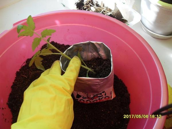 добавление почвенной смеси