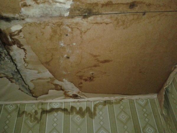 еще более страшные места на потолке показывать не буду - чтобы не пугать вас))