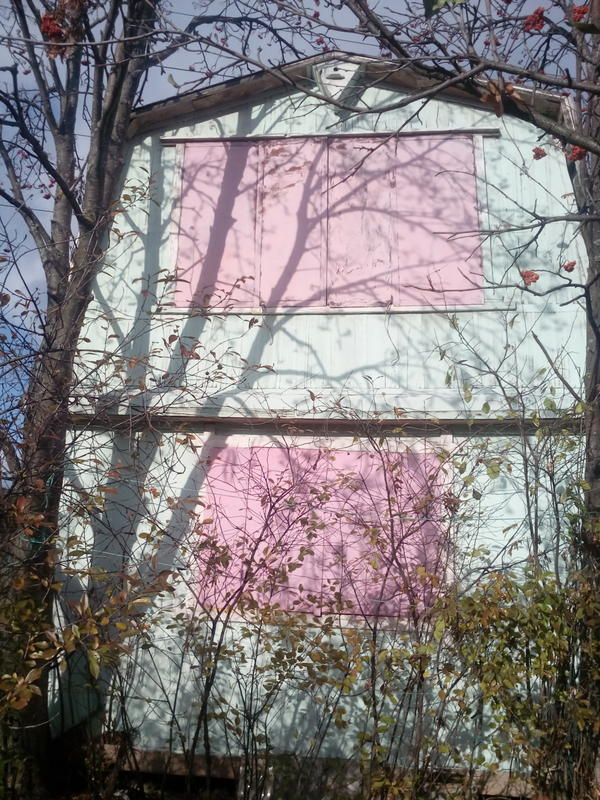 А снаружи домик теперь выглядит так (мы покрасили его в мятный и розовый, используя валики за 50 руб. и лесенку раскладывающуюся):