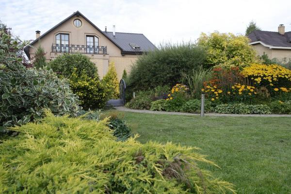 Центральная часть сада