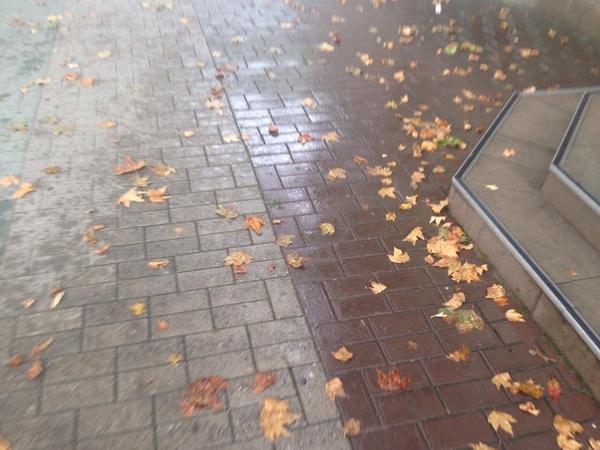 Опадают листья от жары...