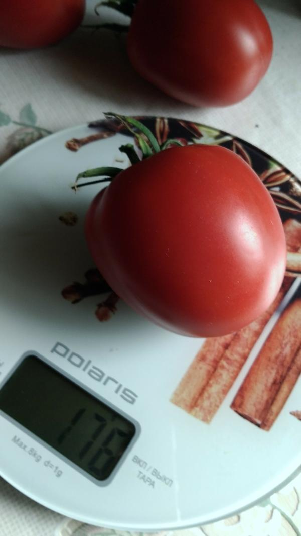 Немного продолжу Это самый крупный томат из кисти.