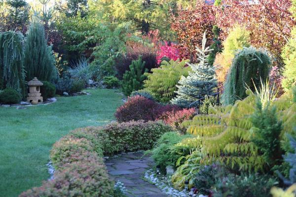 Осенние краски в саду.