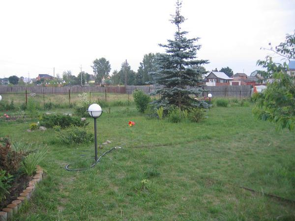 С чего начинался сад 10 лет назад.