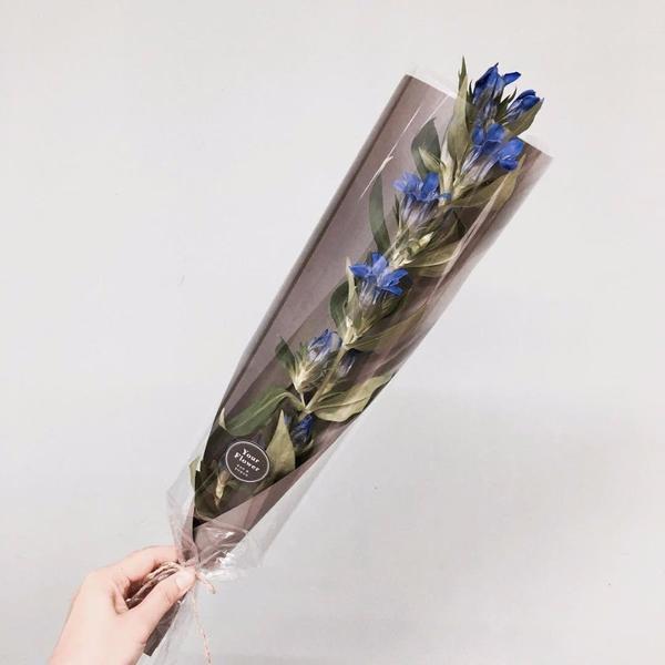 Кто подскажет, что это за цветы?