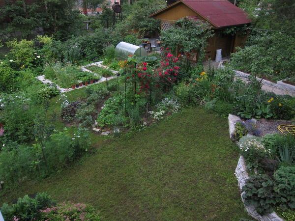 И для огорода нашлось место