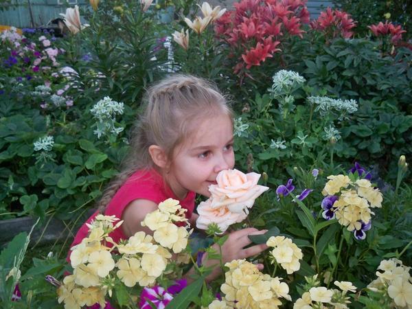 Любимая роза дочери