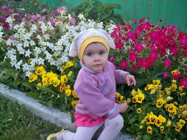 младшая дочь Анюта в анютиных глазках