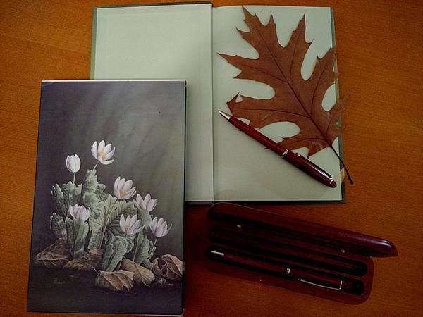.. и ручки люблю красивые...
