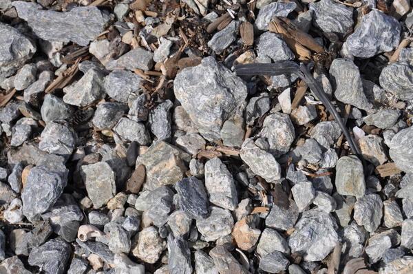 это те самые красивейшие камушки