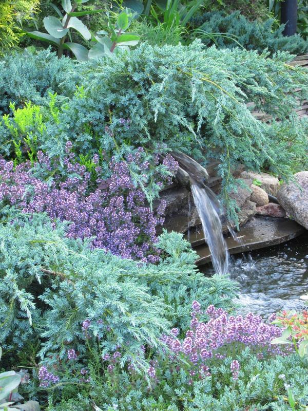Маленький водопад, ниспадающий в небольшой прудик, который, в свою очередь, переходит в сухой ручей.