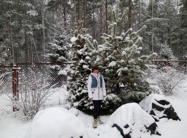 Все заботливо укрыто, припорошено снежком...