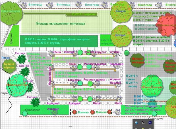 Скриншот моего 2-го участка (всего их 2)