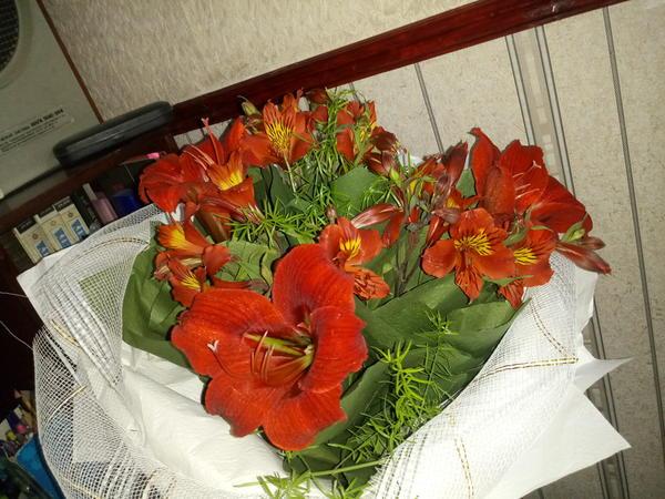Подскажите пожалуйста название этих цветов