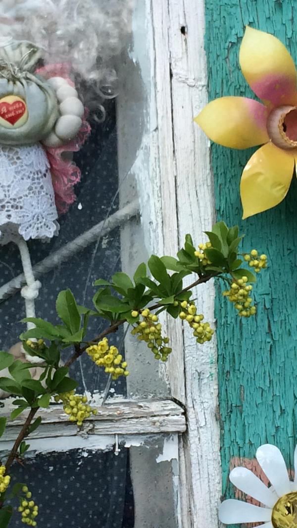 Цветёт в середине мая в Средней полосе.