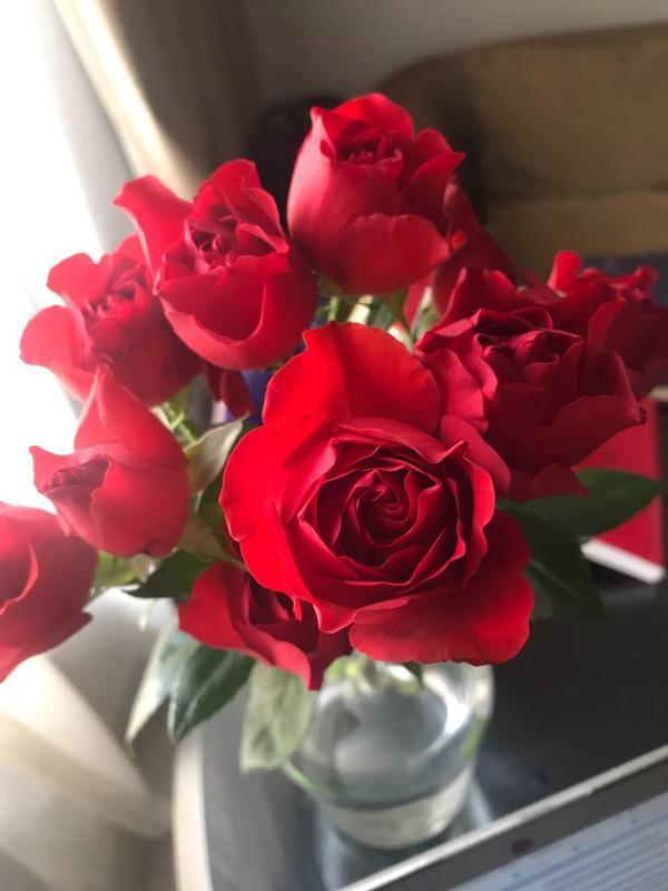 кустарная роза,может кому нибудь известно название сорта)