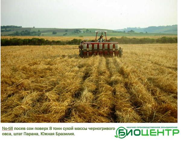Система мульчированного посева