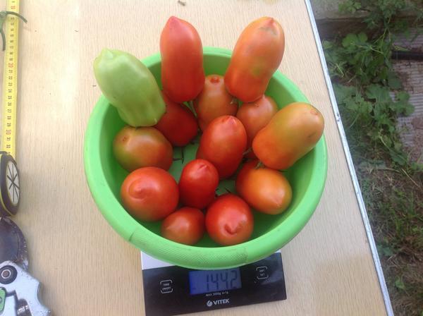 Плоды на весах